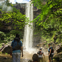 Pinaisara Waterfall 1 Day Tour