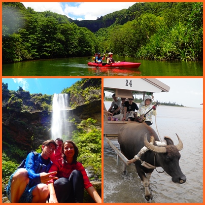 Pinaisara Waterfall Basin & Yubu Island Waterbuffalo Ride set Tour.